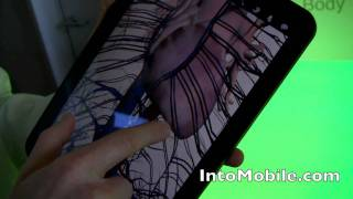 Download Google Body Android app - Hands-on the Android Honeycomb tablet-optimized app from Google HQ Video