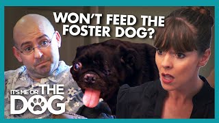Download Victoria Walks Out During Argument About Foster Pug | It's Me or the Dog Video
