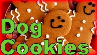 Download How to Make Gingerbread Dog Cookies Christmas Treats | Snacks with the Snow Dogs 6 Video