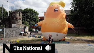 Download Why the British protests of Trump are not surprising Video