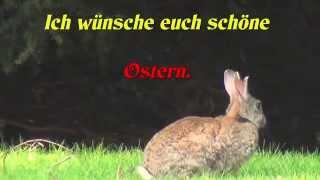 Download Wünsche euch schöne Ostern. Video