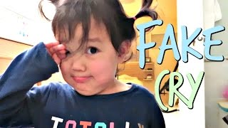 Download The Fake Cry - November 14, 2016 - ItsJudysLife Vlogs Video