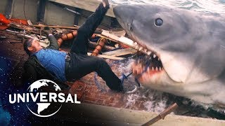 Download Jaws | Scariest Shark Attacks Video