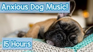 Download NEW Relaxing Dog Music! How to Relax an Anxious Dog! Calm a Stressed Dog and Help Puppies Sleep! 🐕 Video