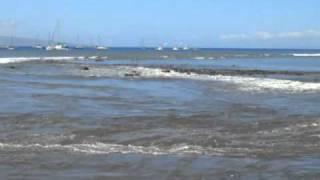 Download Tsunami Maui Lahaina Harbor - March 2011 Video