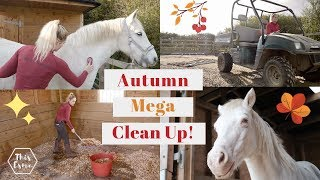 Download Autumn/Fall Massive Equestrian Clean up Routine of the Stables/Barn *Satisfying* | This Esme Video