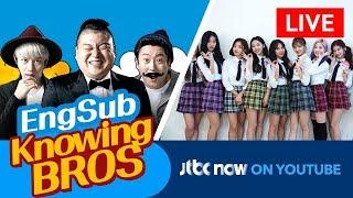 Download JTBC NOW 📺 - KPOP Streaming (24/7) : KPOP線上收看 , 音楽ストリーミング : Knowing Bros Video