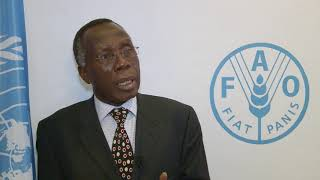 Download Remarks by Nigeria's Agriculture and Rural Development Minister at FAO Video