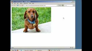 Download How to Insert an Image in a Webpage (HTML / XHTML) Video