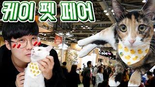 Download 고양이 꾹냥꾹순이 용품사러가기! 케이펫페어가다! (핵귀요미ㅠ) [꾹TV] Video