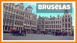 Download Top 10 visitas Bruselas / Bruxelles: Grand Place, Manneken Pis y Atonium | Bélgica 1# | Belgium Video