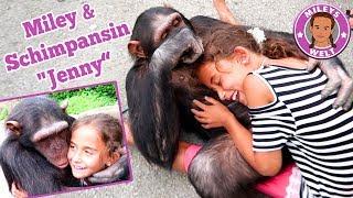 Download Miley & SCHIMPANSE Jenny - super coole Erfahrung mit einem Affen | Mileys Welt Video
