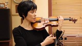 Download Violin Techniques - Wrist Vibrato Video