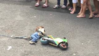 Download Walking street monkey show, Surabaya Video