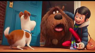 Download THE SECRET LIFE OF PETS All Trailers Video