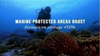 Download Global Partnership for Oceans Video