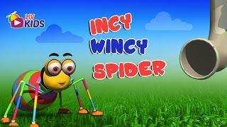 Download Incy Wincy Spider with Lyrics | LIV Kids Nursery Rhymes and Songs | HD Video