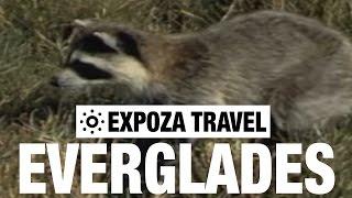 Download Everglades National Park Travel South Florida USA Video Guide Video
