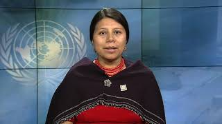 Download Mirian Masaquiza Jerez, Ecuador, reading article 13 of the UDHR in Kichwa Video