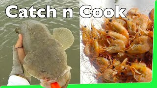 Download Catch n Cook Prawns with Flathead Fishing EP.352 Video