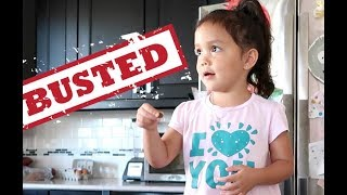 Download CAUGHT RED HANDED! - ItsJudysLife Vlogs Video