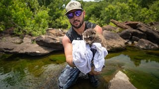 Download Rescuing BABY Raccoon From Drowning In Creek!! (life saved)| Jiggin' With Jordan Video