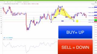 Download Forex Harmonic Pattern Scanner with iMarketsLive Video