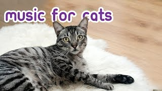 Download Extended Cat Music - Relax Your Cat for 15 Hours! Video