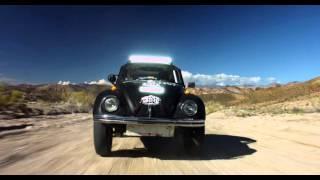 Download Class 11 Race Beetle Video