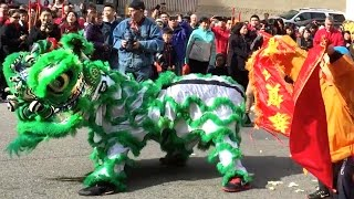 Download 2016 Boston Lion Dance (Chinese New Year) - Parade and Stage Event in Chinatown Video