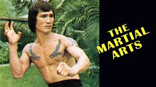 Download Wu Tang Collection - Martial Arts Video