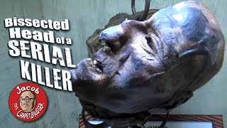 Download Bissected Head of a Serial Killer at Ripley's Believe it or Not WIsconsin Dells Video