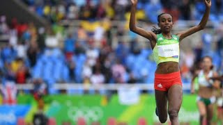 Download Rio Olympics 10000m NEW WORLD RECORD!! by Almaz Ayana Video