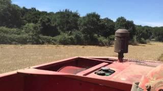 Download Laverda M132 Trebbiatura grano duro 2015 Video