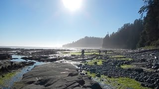 Download West Coast Trail - Vancouver Island, Canada Video