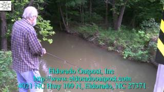 Download Roadside Creek Fishing Video