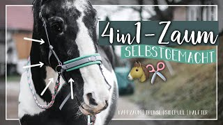 Download 4in1-ZAUM selbstgemacht 🐴✂️   Trense, Kappzaum, Sidepull, Halfter // A&G HorseDiary Video