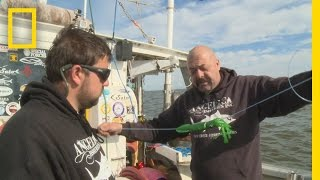Download Fishing Tips: How to Rig a Squid | Wicked Tuna: Outer Banks Video