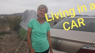 Download Home is a Acura. Solo female living and traveling in her car. Video