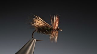 Download Tying the Peacock caddis with Barry Ord Clarke Video