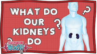 Download Operation Ouch - Learn About the Kidneys | Fun Science | Nugget Video