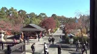 Download 14 Florian auf Tour - Nagano - Zenkô-ji Video