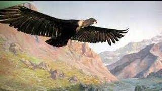 Download El Condor Pasa - Paul Simon & Garfunkel Video