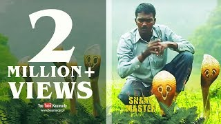 Download Vava Suresh releasing a bunch of rescued Cobra Snakes into forest | SNAKE MASTER 16-06-2016 | Video