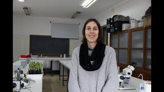 Download Marta Correia explica o projeto que estudou dois mutualismos das plantas Video