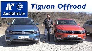 Download 2016 Volkswagen VW Tiguan Offroad Video