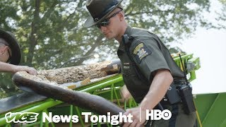 Download This Is What An Ivory Bust In New York City Looks Like (HBO) Video
