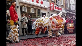 Download Chinese New year Zeedijk Amsterdam 2018 - Dragon and Fireworks Video