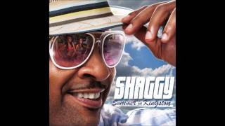 Download Shaggy - End of the World (Drink Up) [NEW SONG 2011] Video