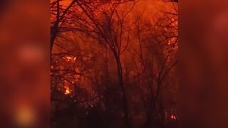 Download Tennessee wildfires kill 3 Video
